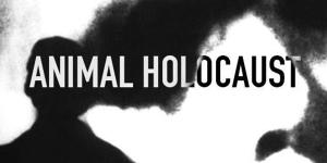 Raveyard pres. Animal Holocaust (FR)