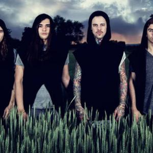 Chelsea Grin (USA),  Betraying The Martyrs (F), Make Them Suffer (AUS), Void Of Vision (AUS)