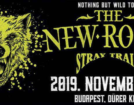 The New Roses (DE) Stray Train (SI)