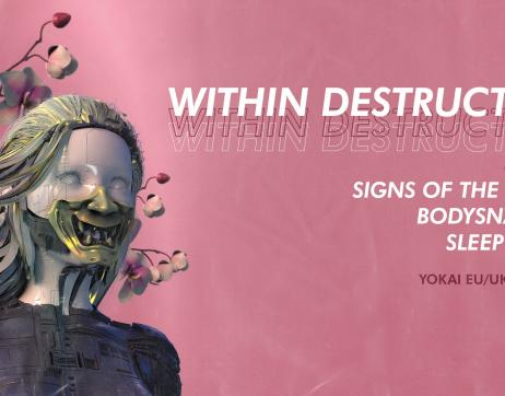 Within Destruction