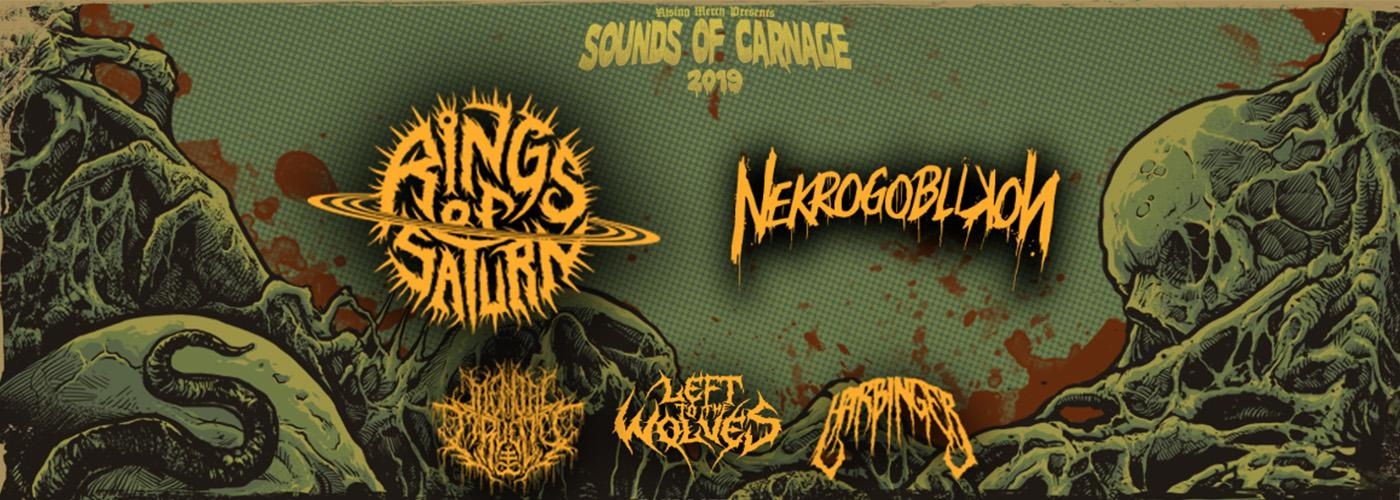 Sold out! - Rings Of Saturn, Nekrogoblikon, Mental Cruelty + support